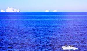 море Дюрвиля